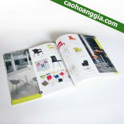 in catalogue chất lượng 2